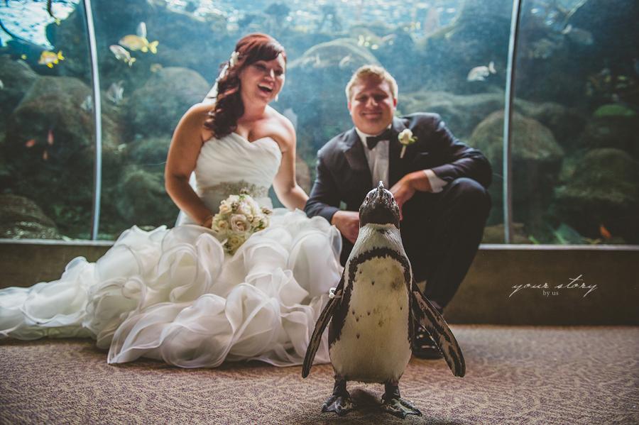 Carolyn and john wedding