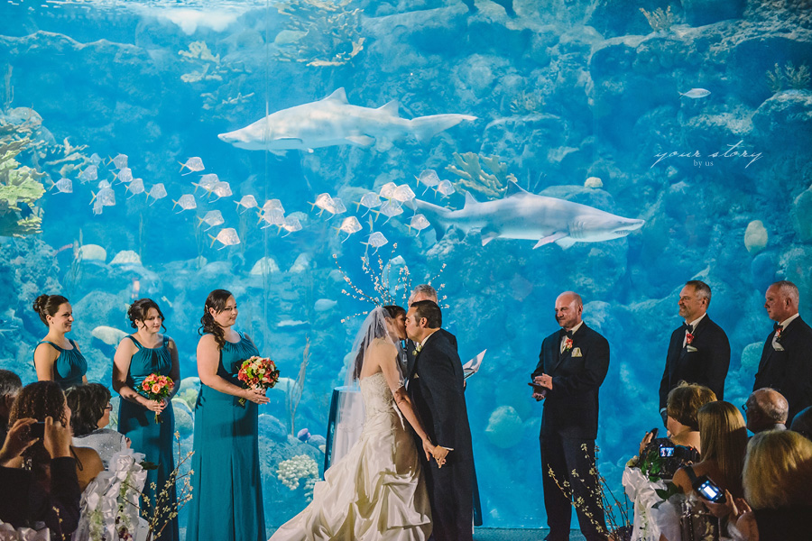 Melissa Mike 39 S Aquarium Wedding Tampa Wedding