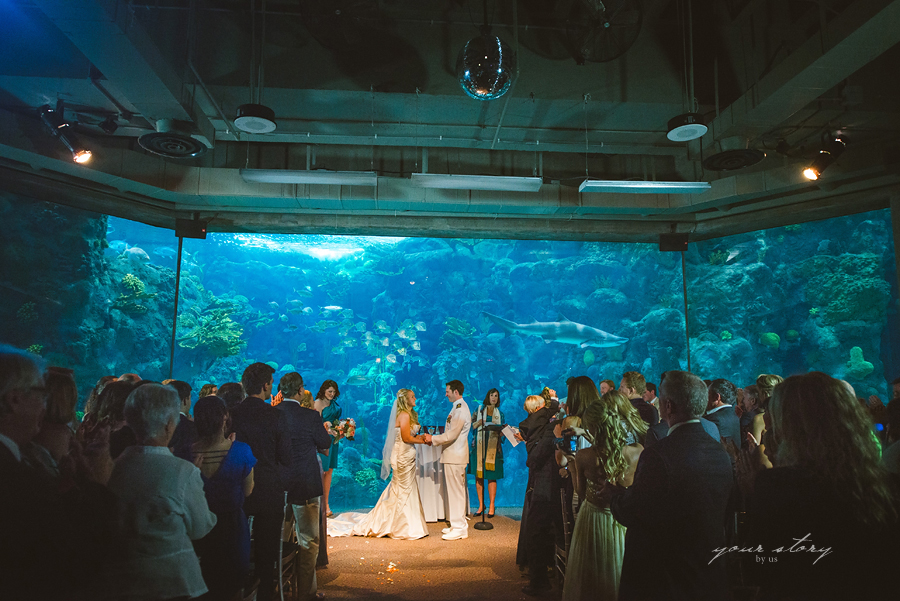 Rhea Adam 39 S Florida Aquarium Wedding Tampa Wedding